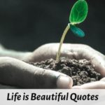 Best Life is Beautiful Quotes and Sayings