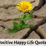 101 Positive Short Happy Life Quotes on Love, Success, Motivation