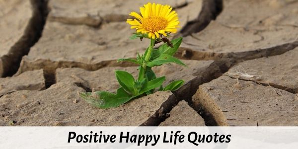 positive happy life quotes
