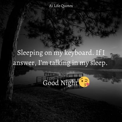 good night quotes for crush