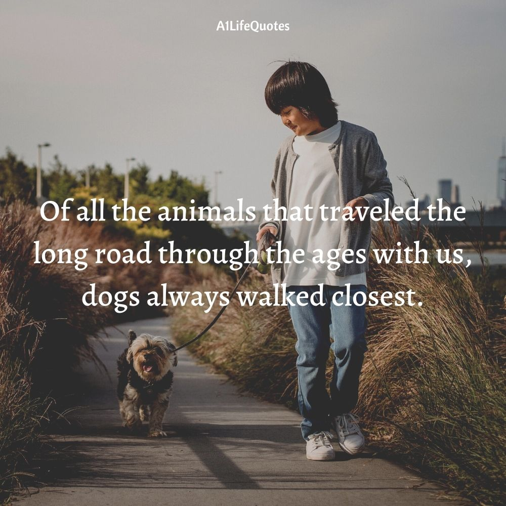 a boy and his dog at the end of the world quotes