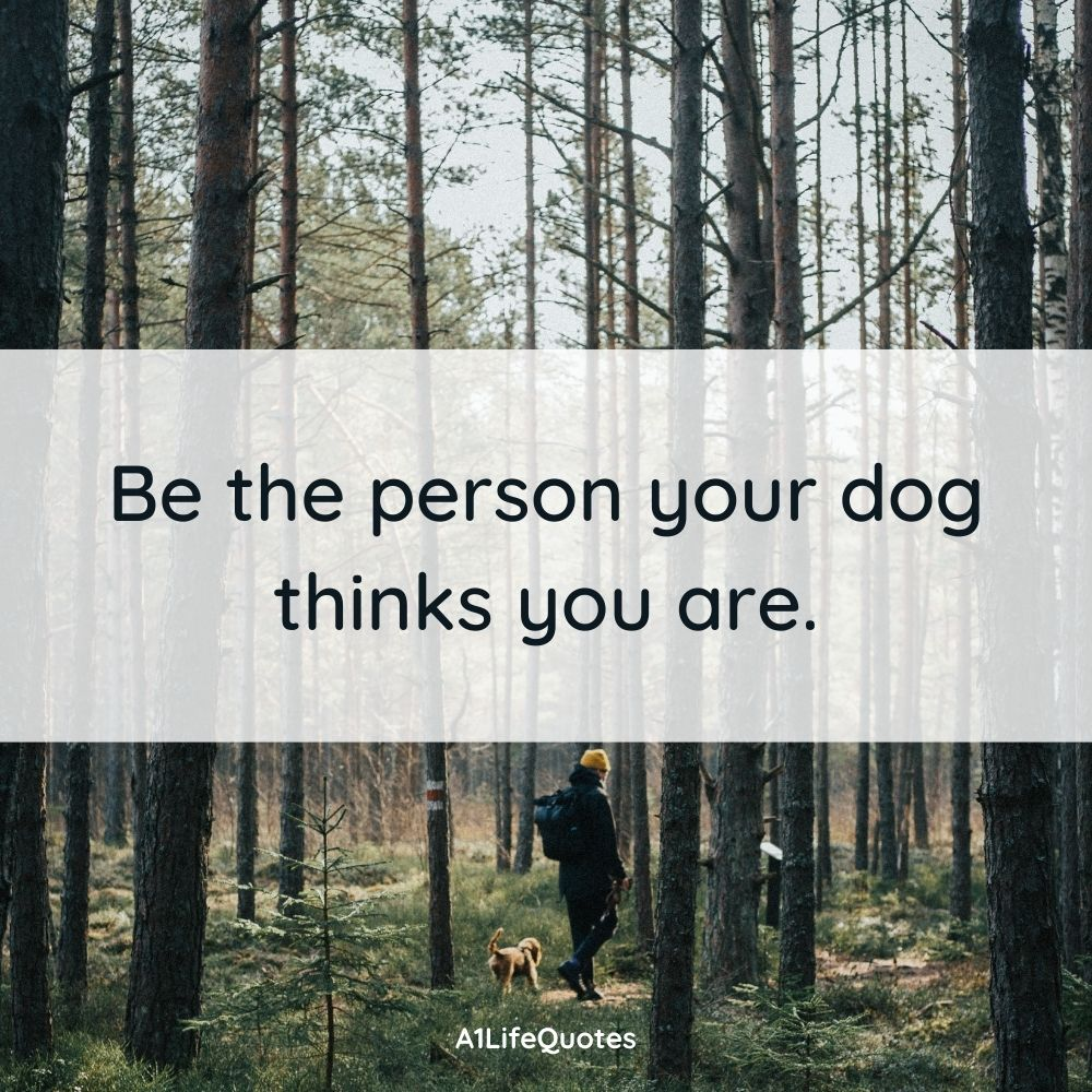 a boy and his dog quotes