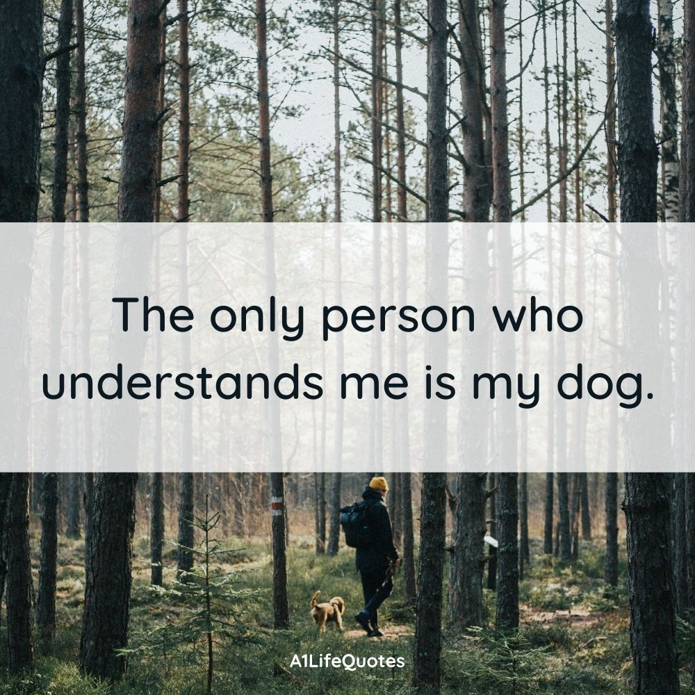 just a boy and his dog quotes