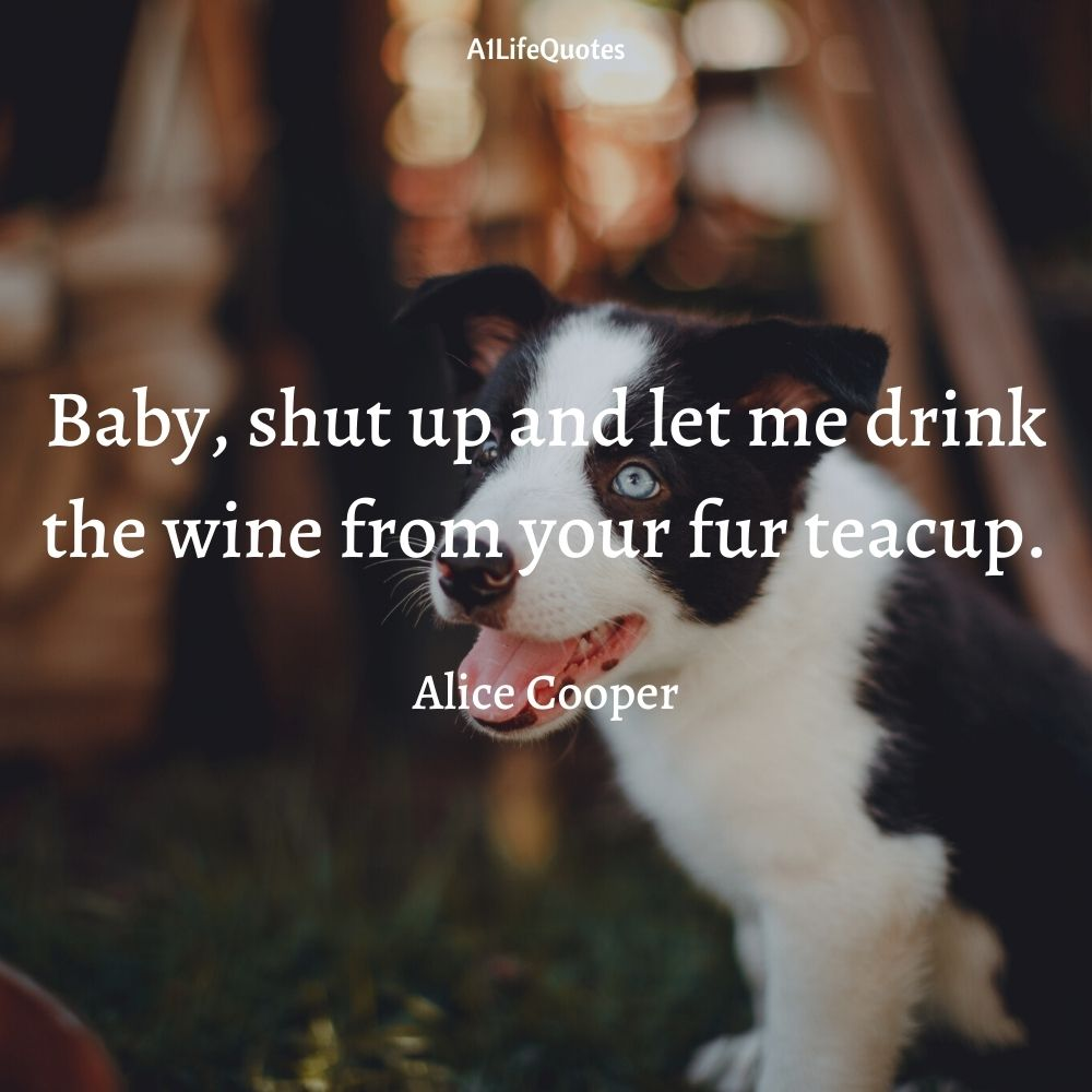 fur baby quotes