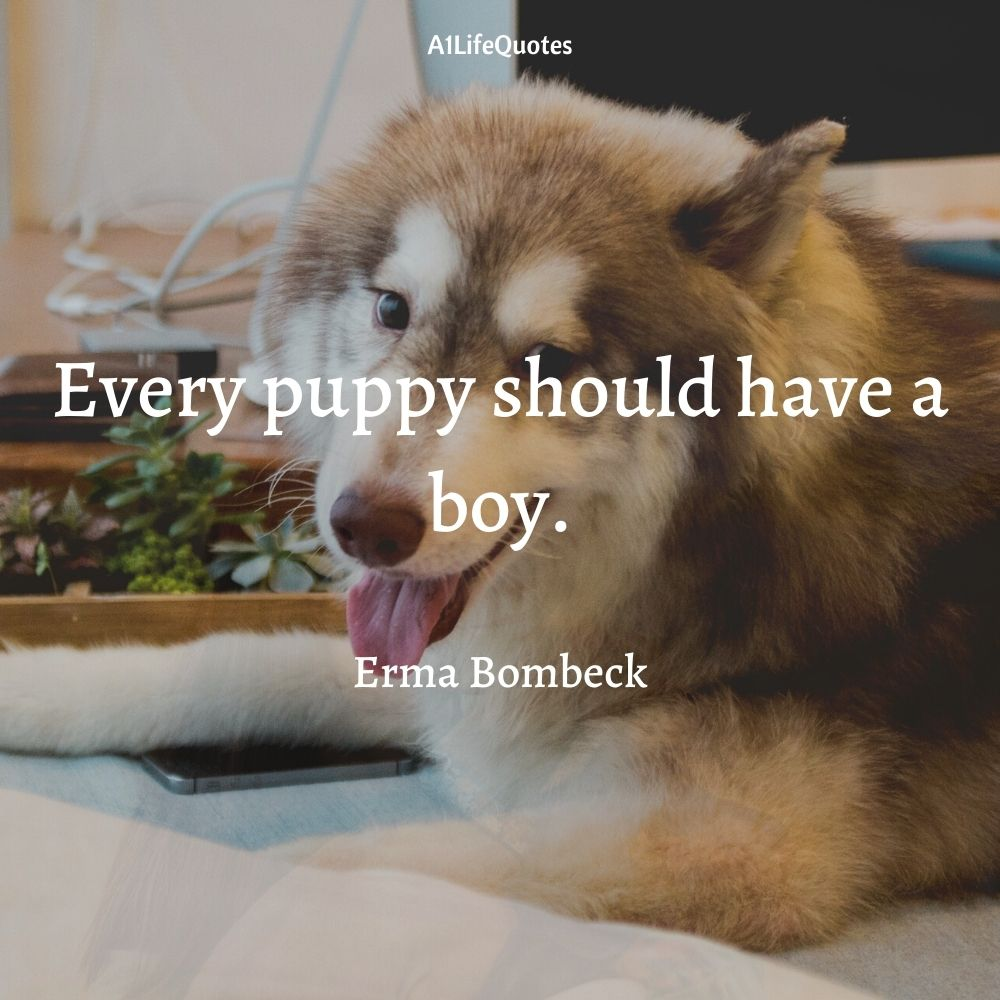 baby and dog captions