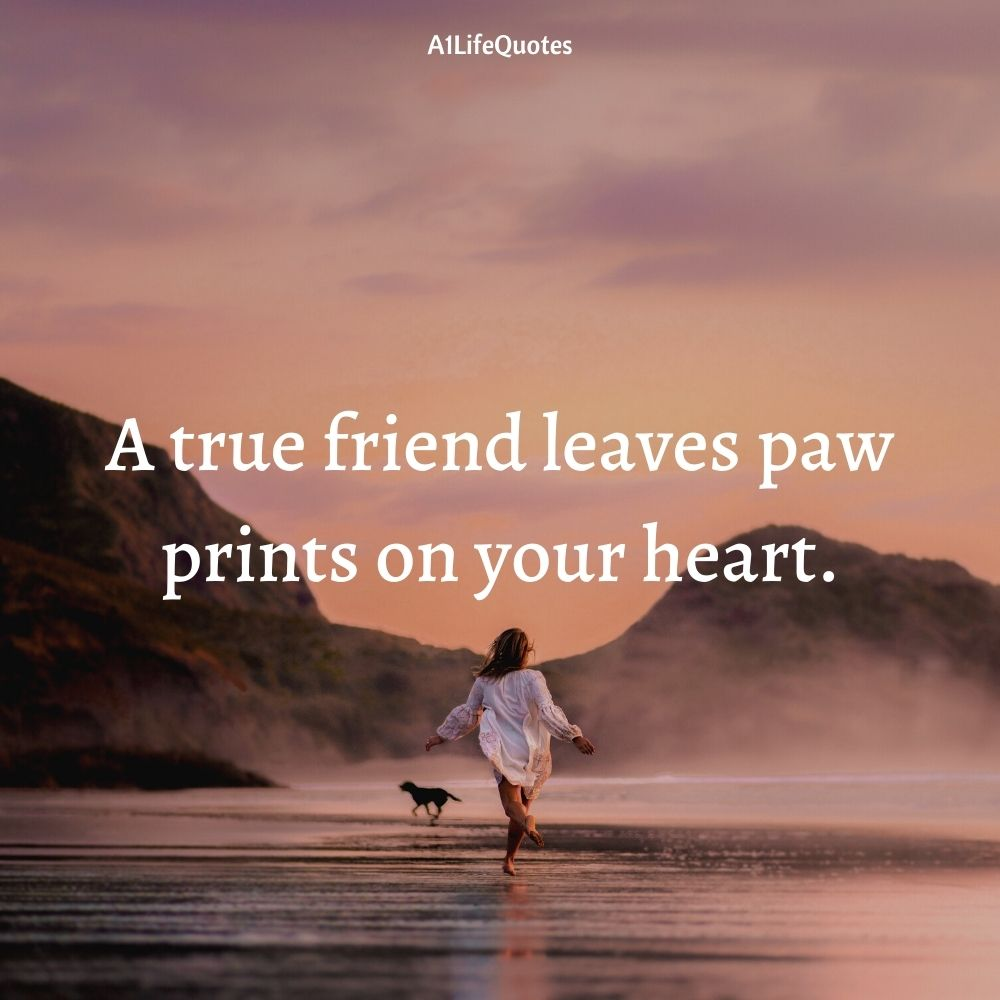 dog and baby best friends quote