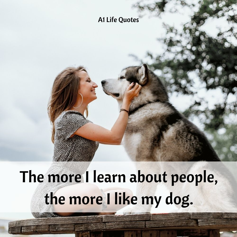 i love my dog quotes