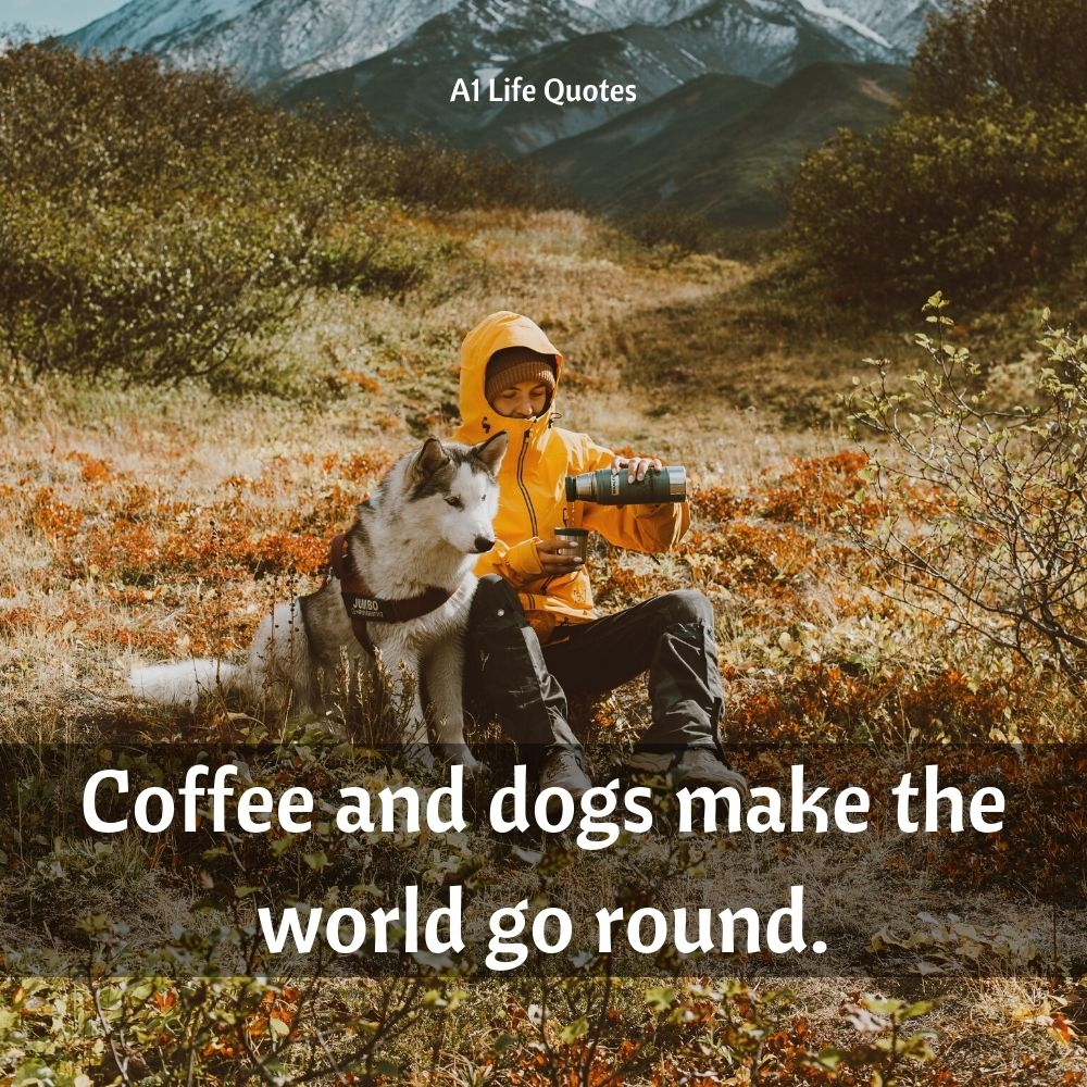 dog mom quotes for instagram