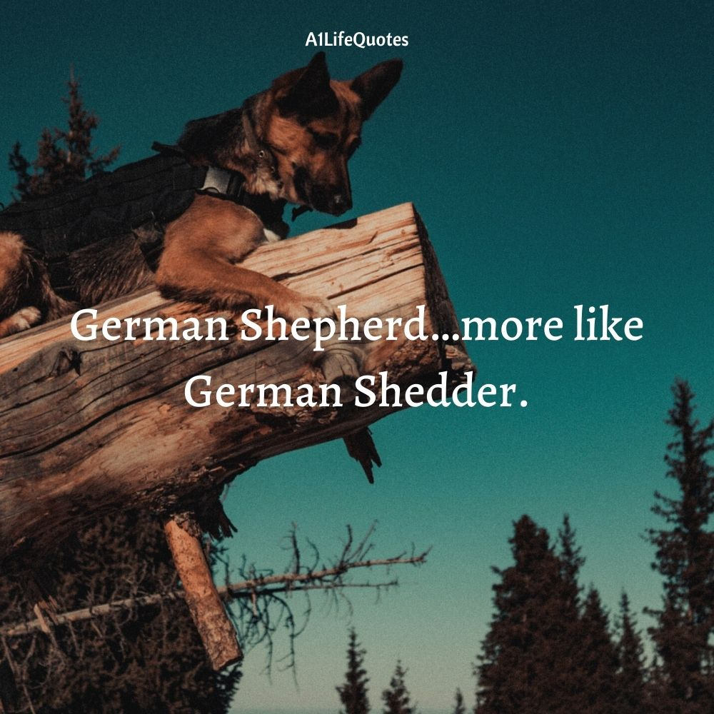 gsd quote