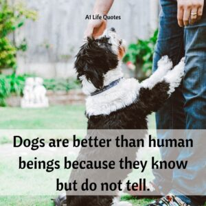 quote for losing a dog
