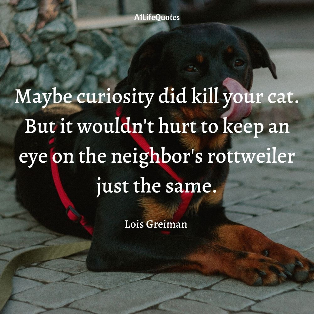 rottweiler dog quotes