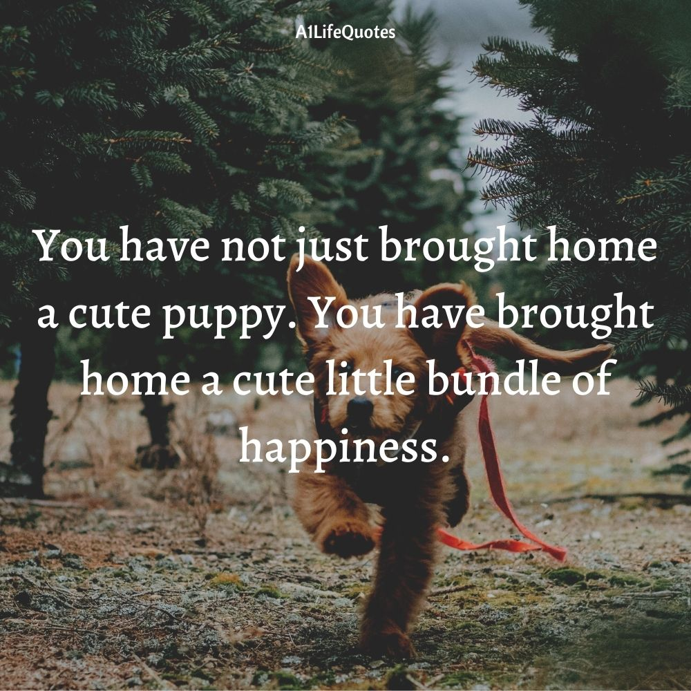 welcome new puppy quotes