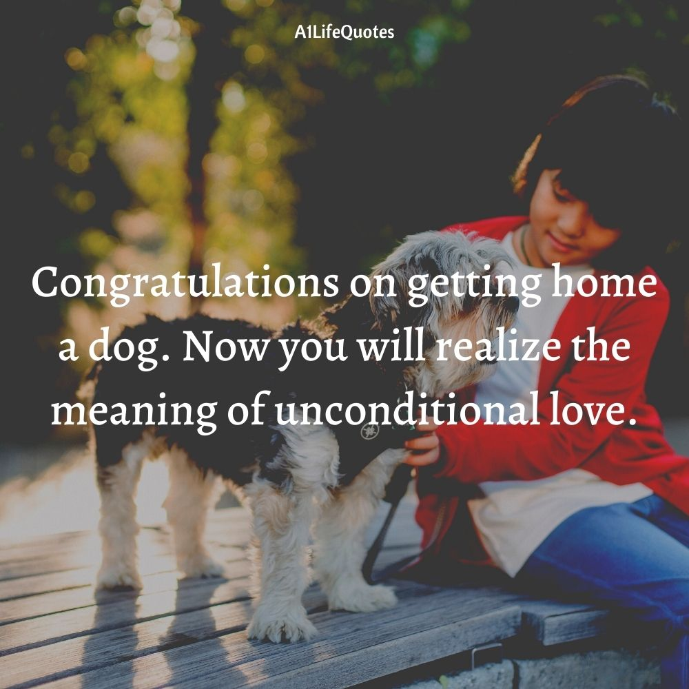 puppy announcement welcome new puppy quotes