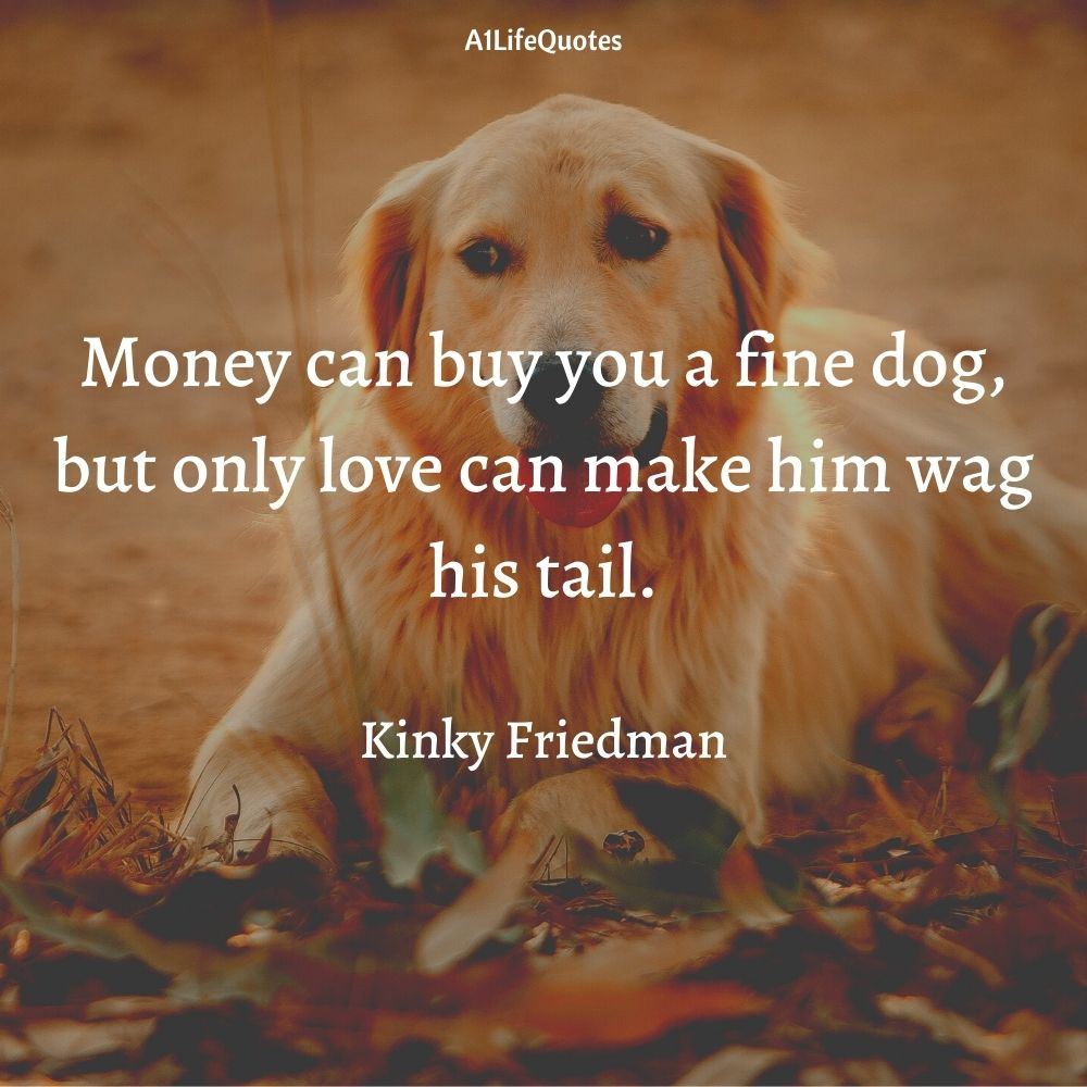 i love dogs more than humans quotes