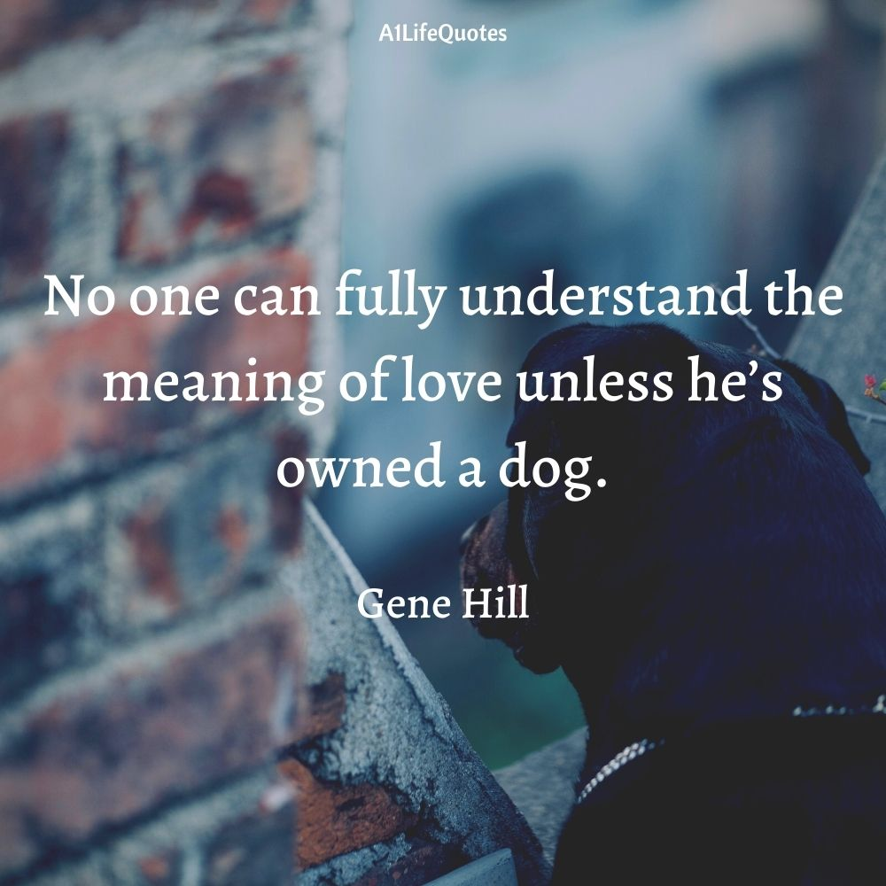 dogs are more loyal than humans quotes