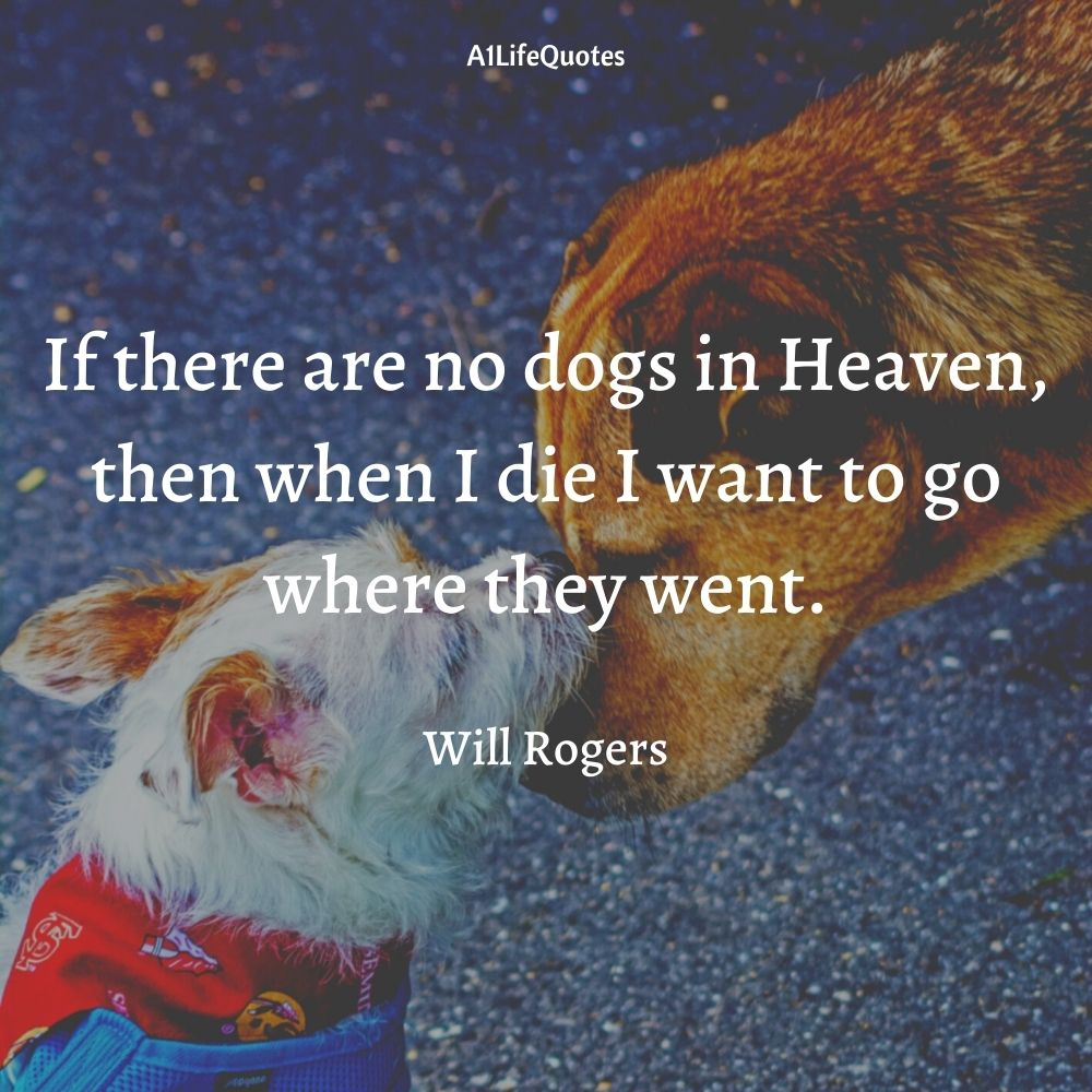 will rogers dog quote