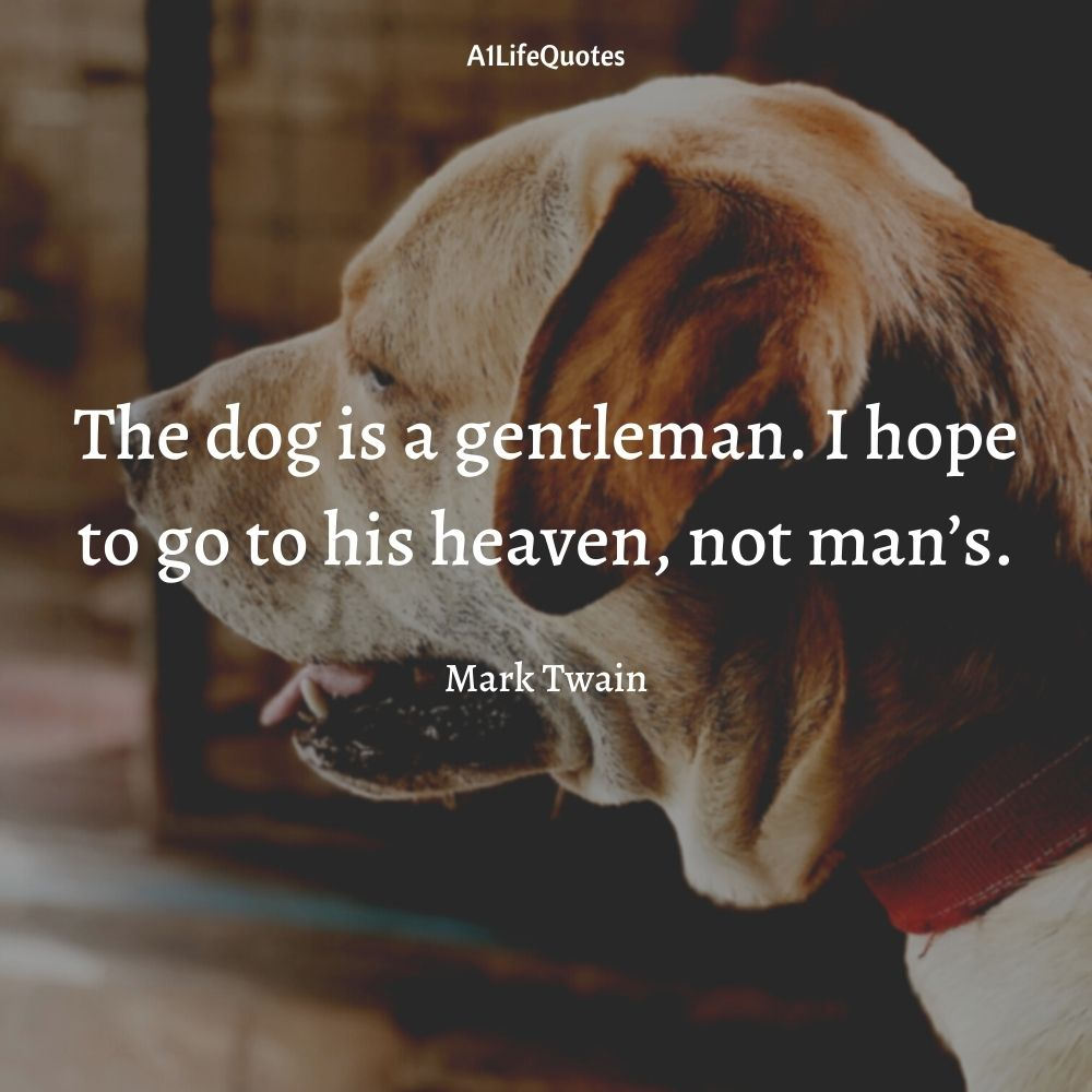 inspirational quotes about losing a dog