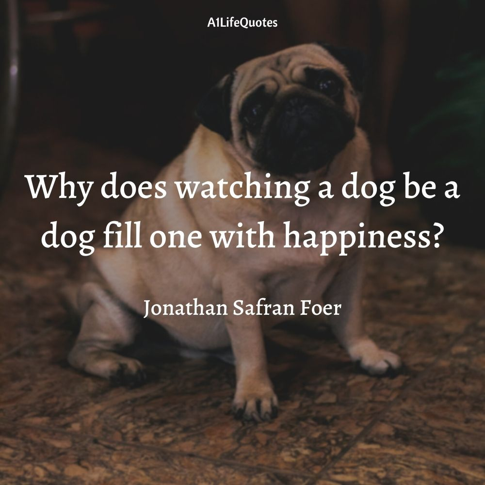 pug love quotes